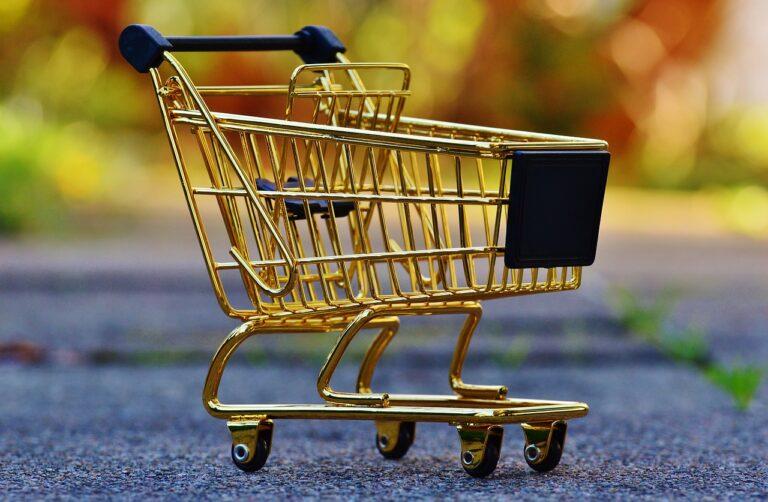 Comment bien choisir votre chariot de courses pour personnes âgées?